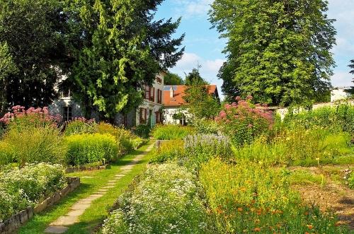 Ecolonie Vosges hébergement sain sans WiFi ecologique