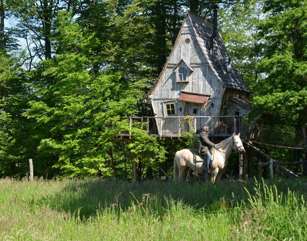 La ferme des Histoires Mélangée hébergement nature, sans WiFi pour EHS et MCS